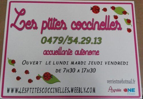 Les ptites coccinelles , Panneau