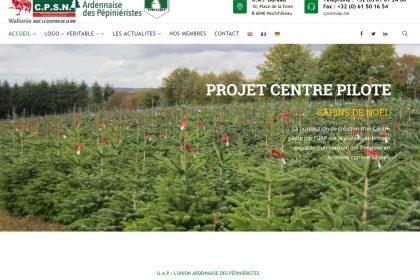 U.A.P, Site web