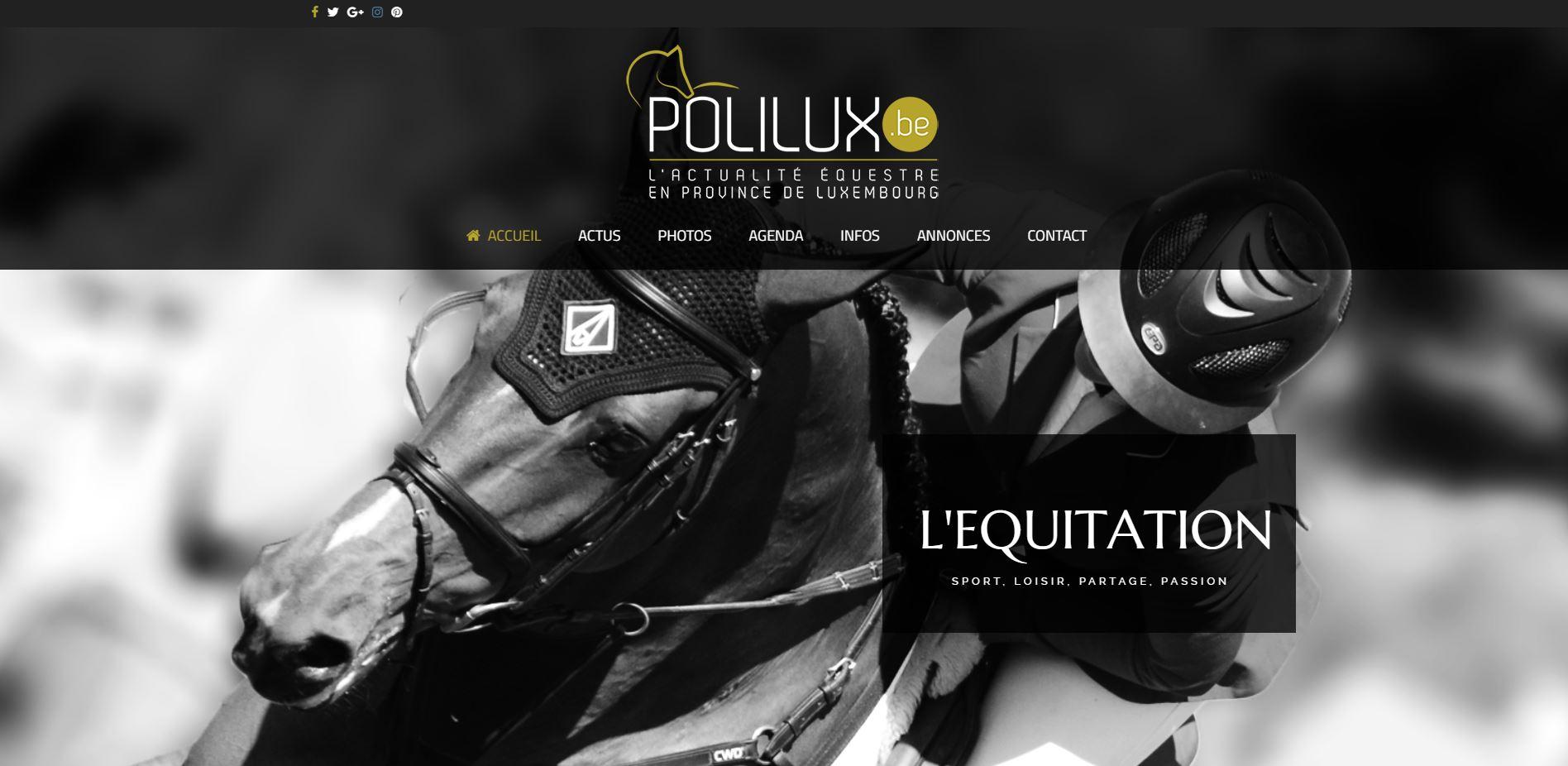 Polilux , Site web