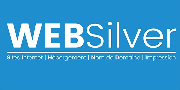 Logo WebSilver